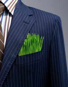 Corporate-Sustainability-David Kinnear