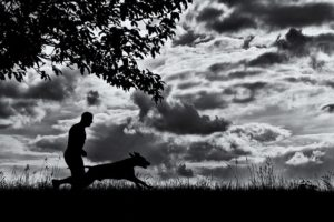 Silhouette of Dog and Owner against open sky.