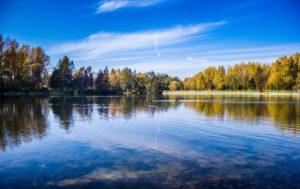 david kinnear-great lakes